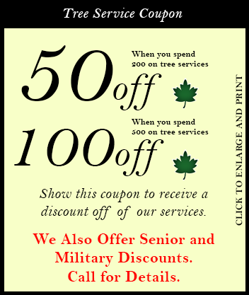 Olive Branch Tree Care and Landscaping Coupon Bradenton Florida